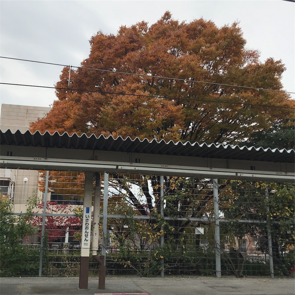 f:id:YukikoIshii:20171108193107j:image