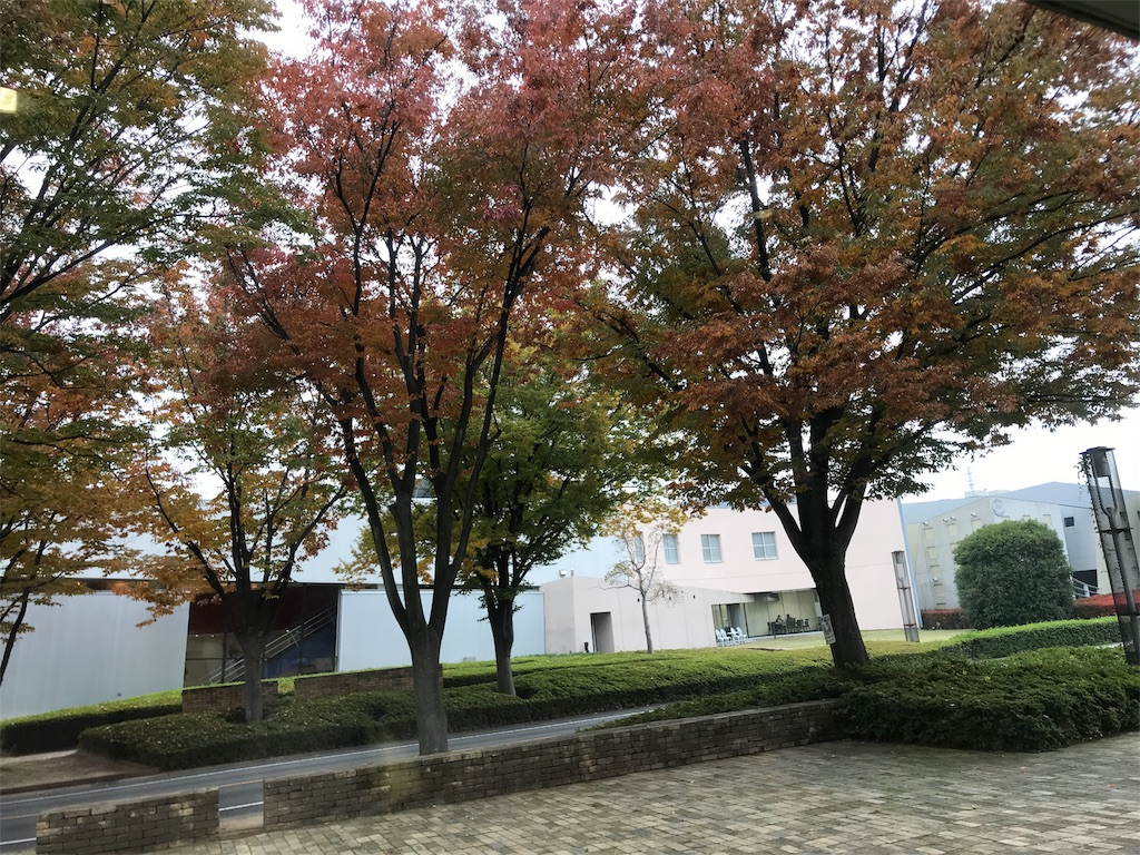 f:id:YukikoIshii:20171108193129j:image