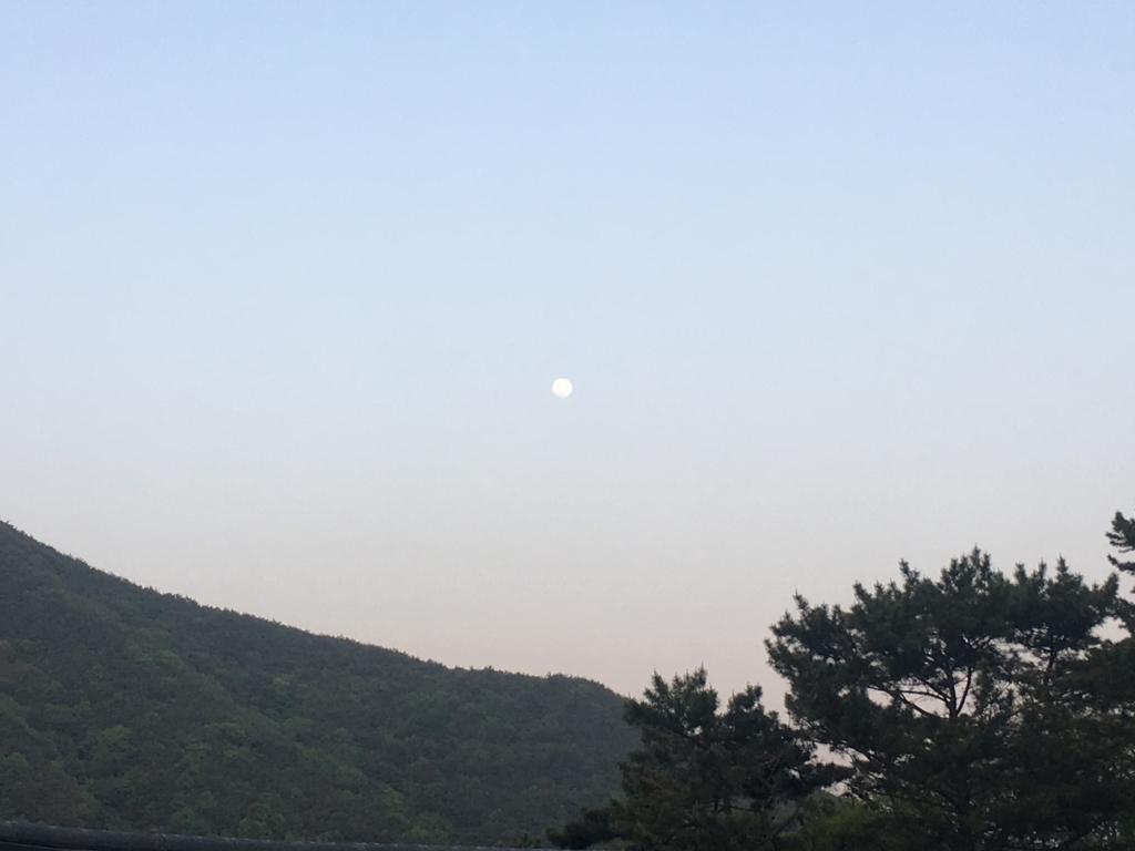 f:id:YukoSawada:20180507093225j:plain