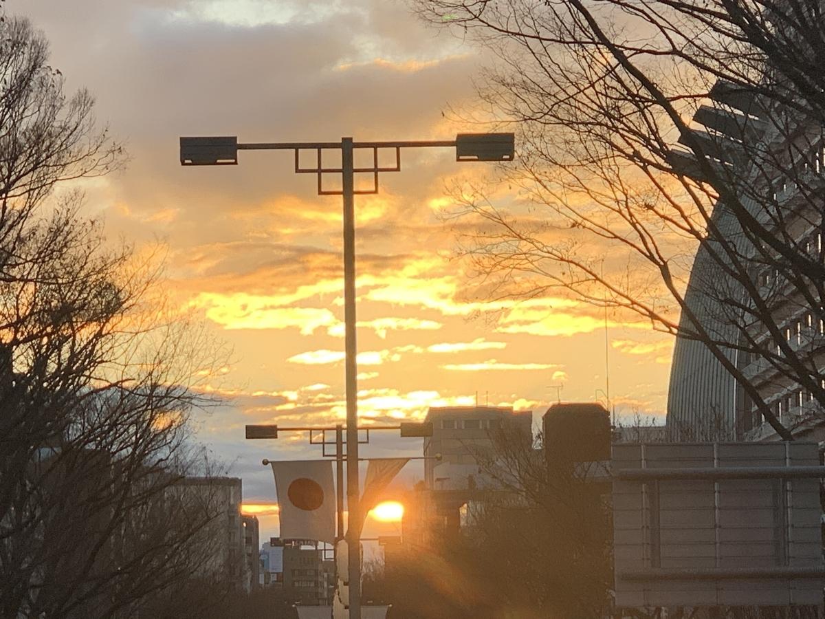 f:id:YukoSawada:20200102125916j:plain
