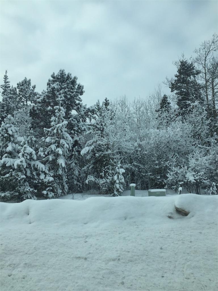 f:id:YukonWhitehorse:20180208124651j:image