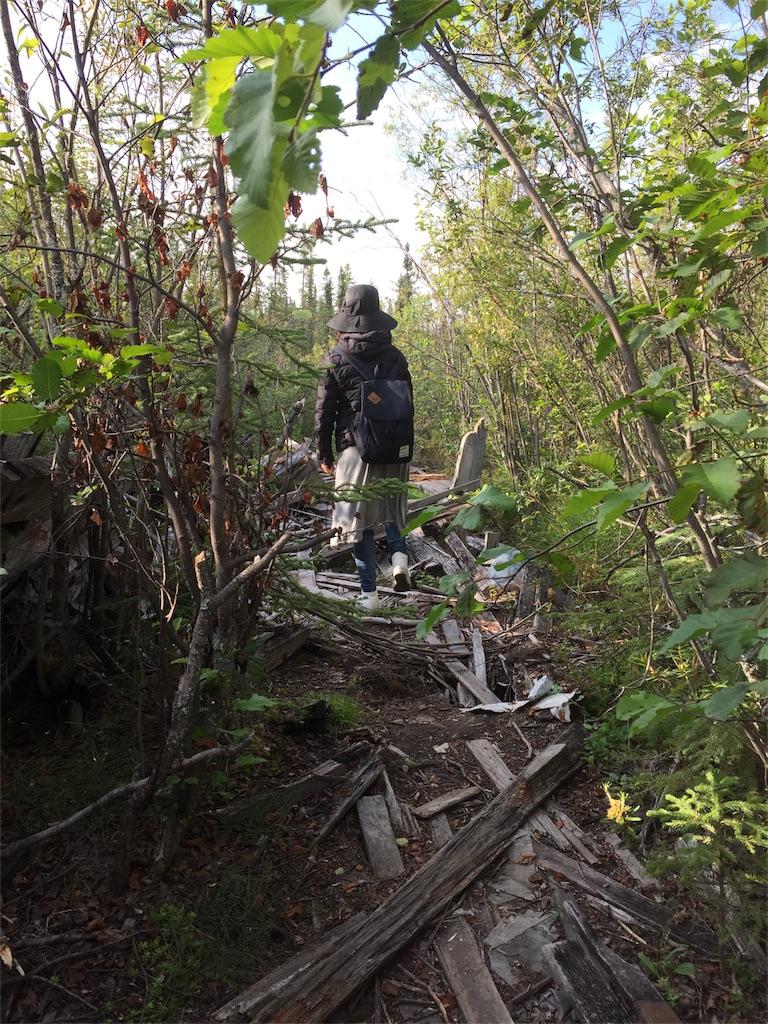 f:id:YukonWhitehorse:20180728164408j:image