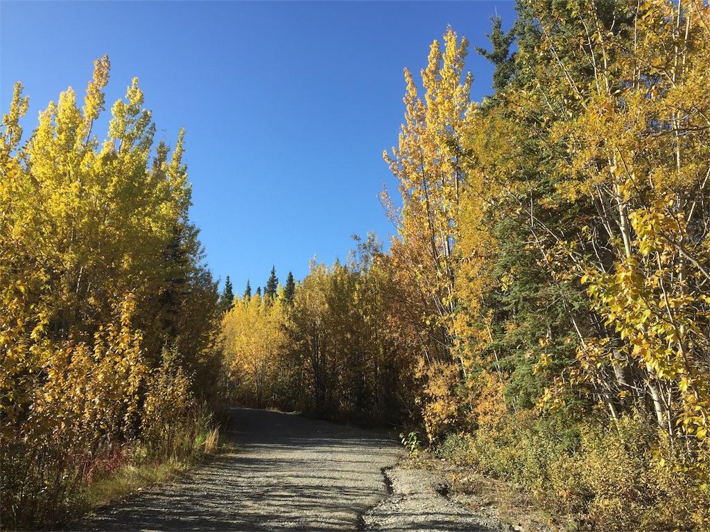 f:id:YukonWhitehorse:20180922025440j:image