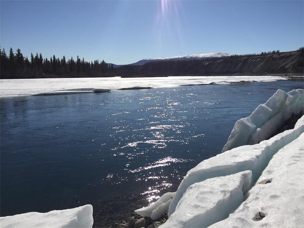 f:id:YukonWhitehorse:20190329070548j:image