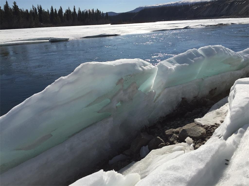 f:id:YukonWhitehorse:20190329070553j:image