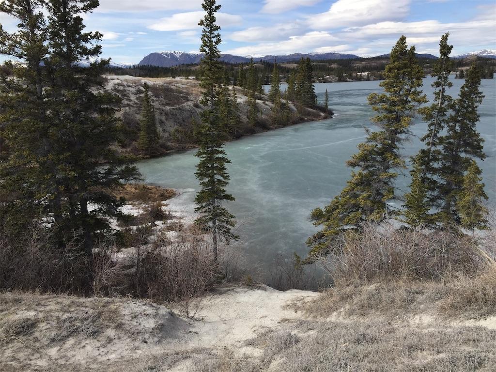 f:id:YukonWhitehorse:20190503133717j:image