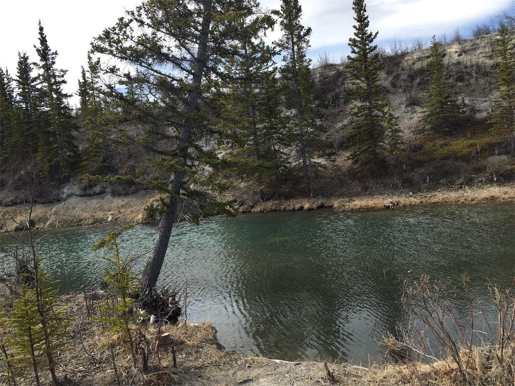 f:id:YukonWhitehorse:20190503133738j:image