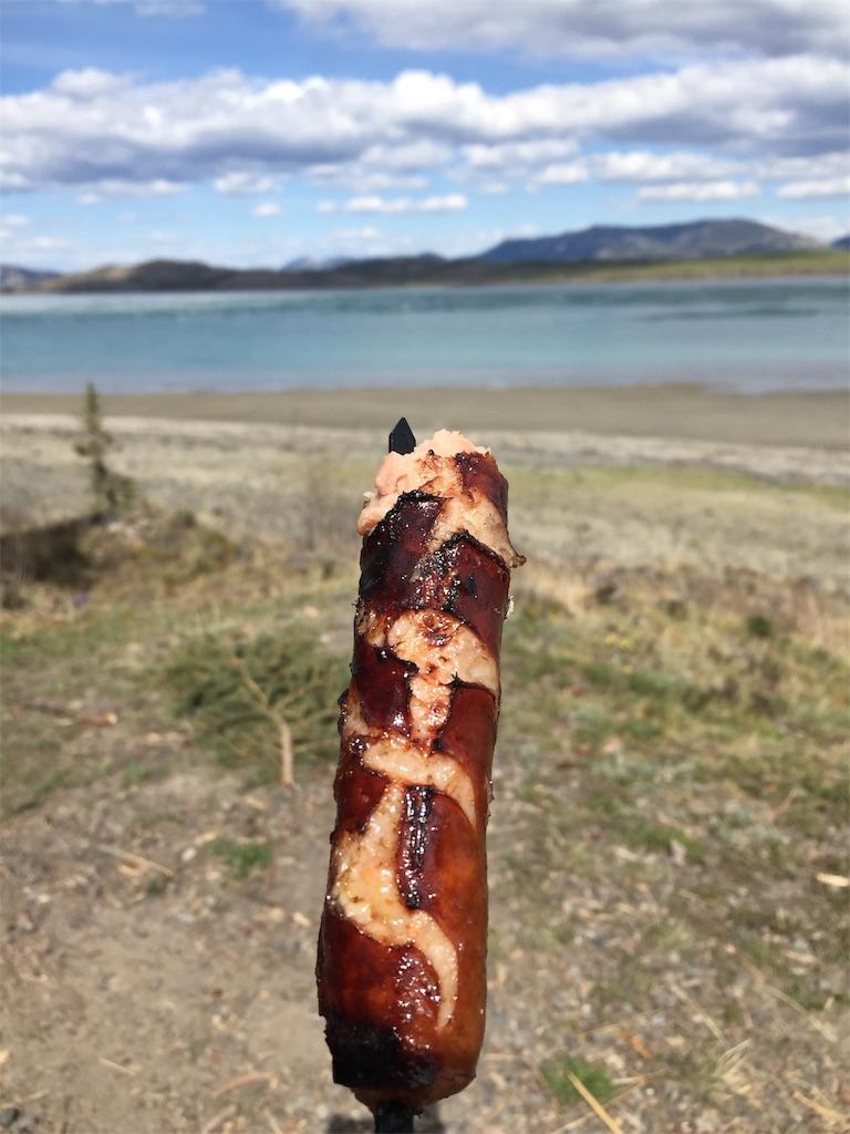 f:id:YukonWhitehorse:20190516142325j:image