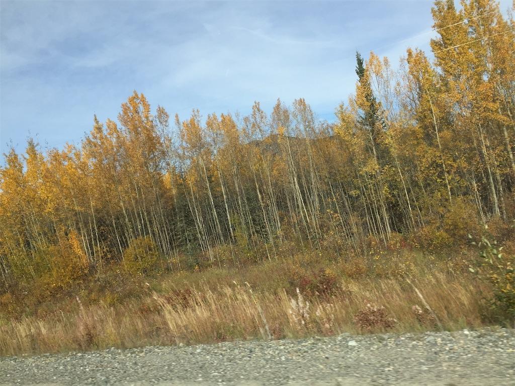f:id:YukonWhitehorse:20190917151817j:image