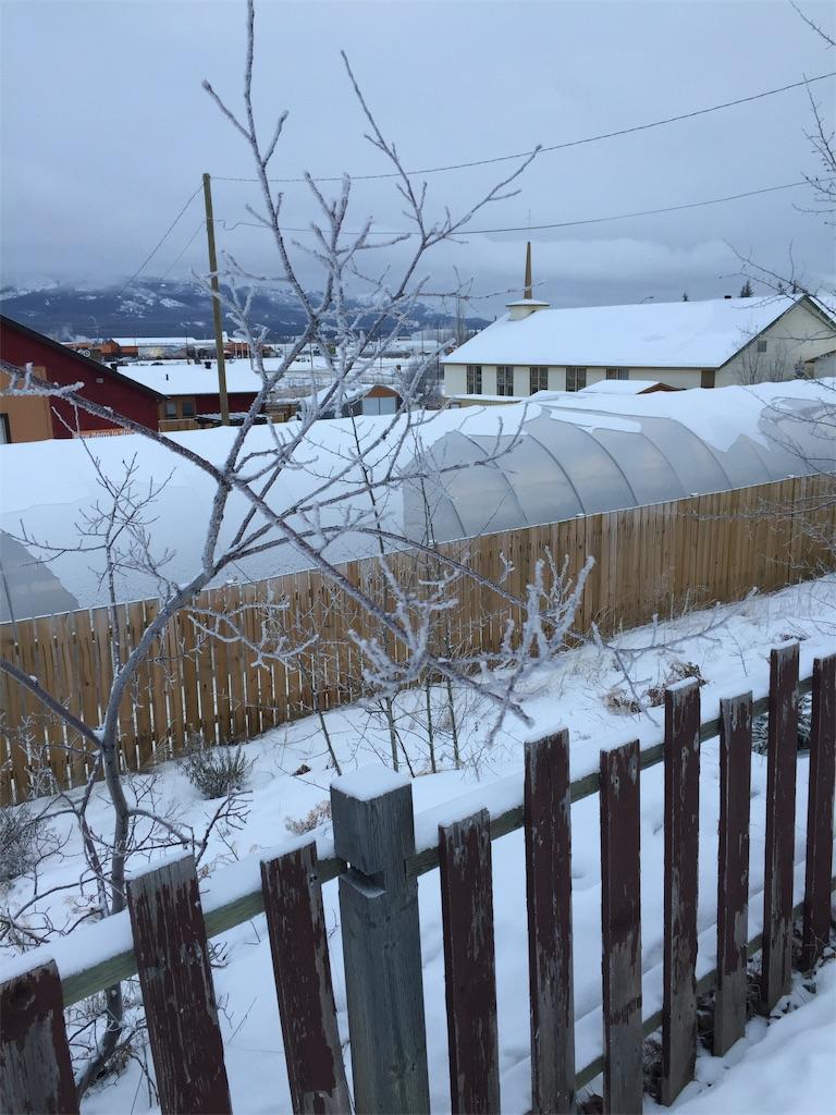 f:id:YukonWhitehorse:20191207142213j:image