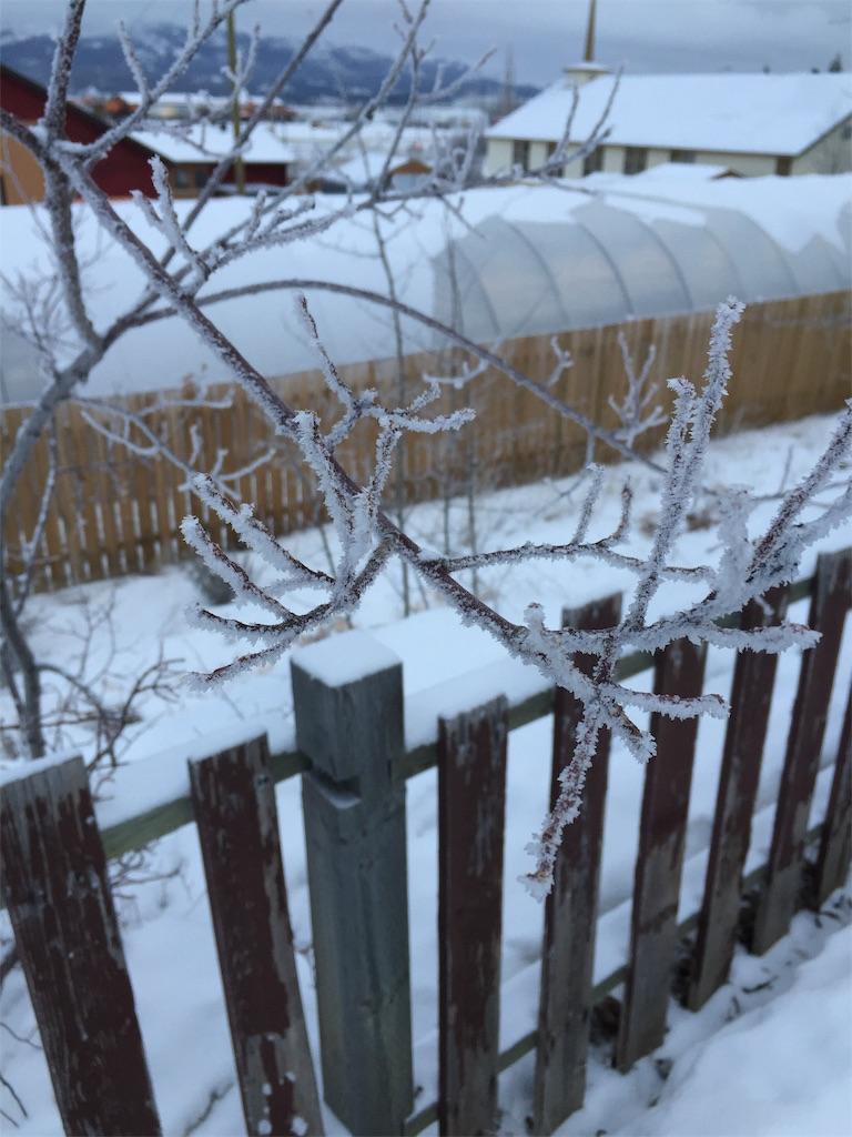 f:id:YukonWhitehorse:20191207142221j:image