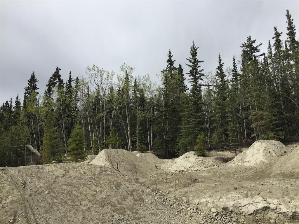 f:id:YukonWhitehorse:20200520133612j:image