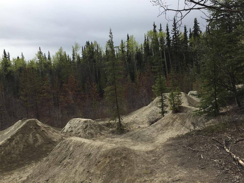 f:id:YukonWhitehorse:20200520133628j:image