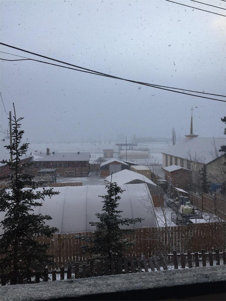 f:id:YukonWhitehorse:20201023032646j:image