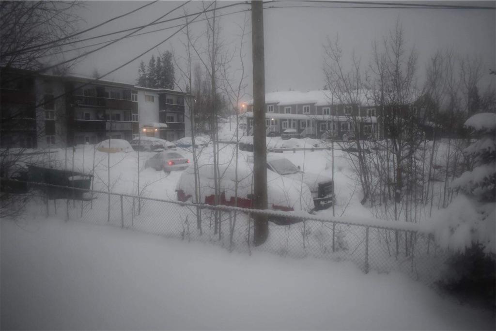 f:id:YukonWhitehorse:20201104030811j:image