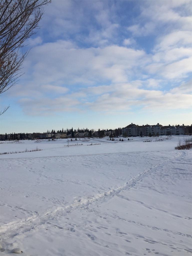 f:id:YukonWhitehorse:20201228044720j:image