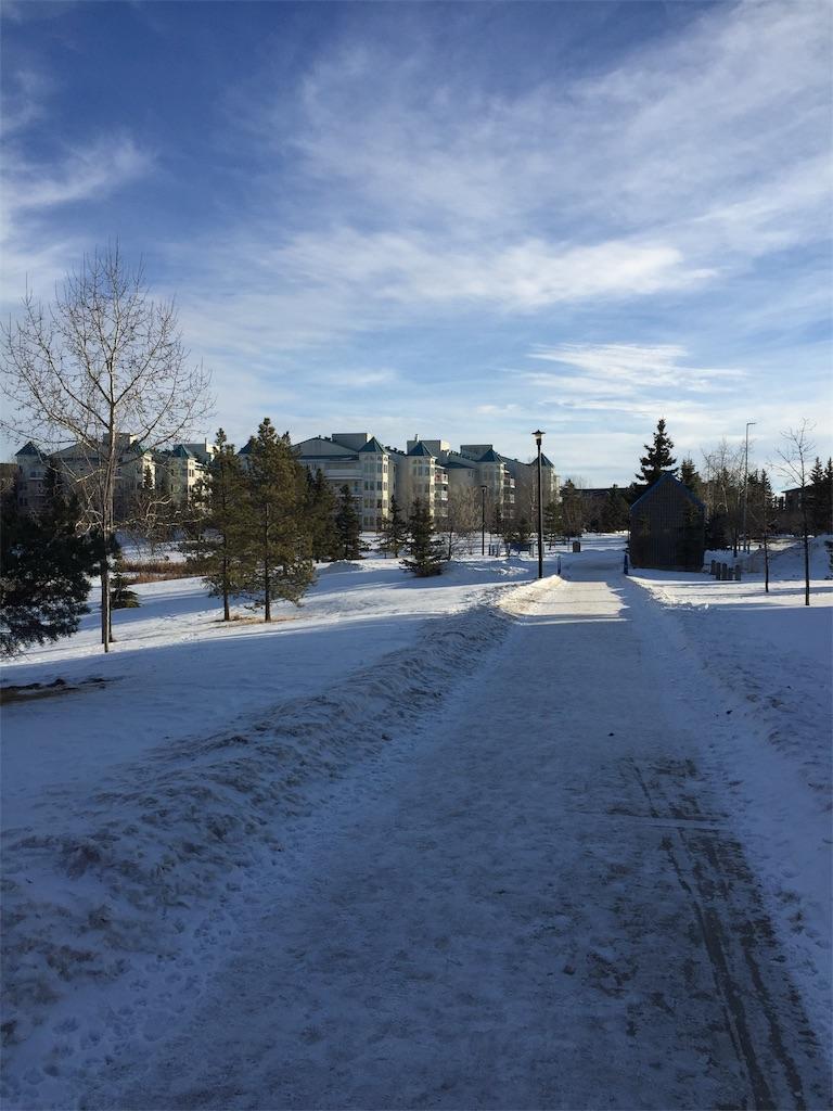 f:id:YukonWhitehorse:20201228060313j:image