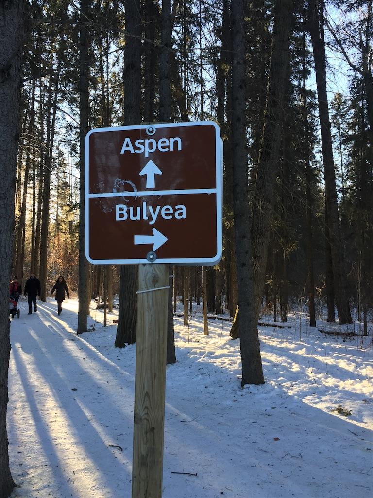 f:id:YukonWhitehorse:20210118033636j:image