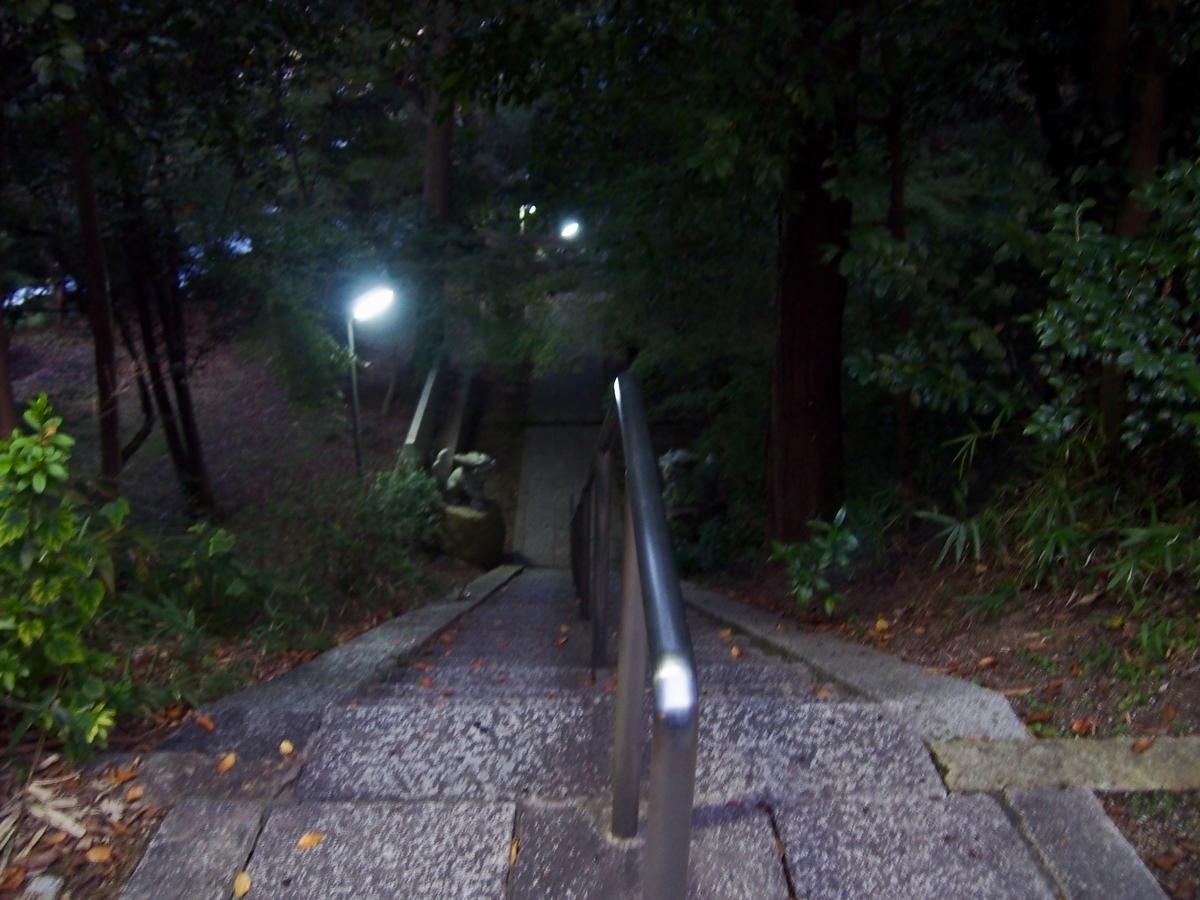 f:id:YumiAIKAWA:20191118021815j:plain
