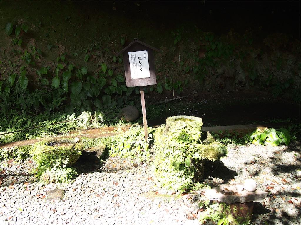 f:id:YumiAIKAWA:20200920231544j:image