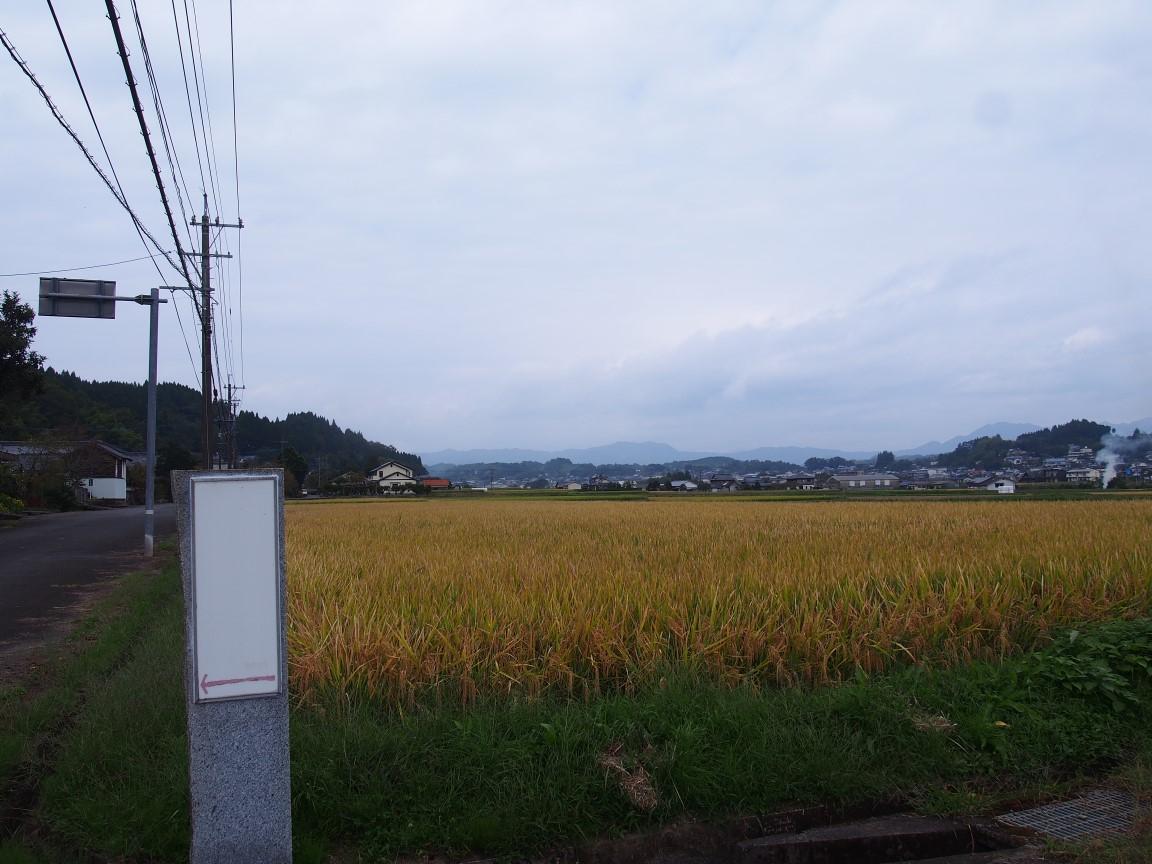 f:id:YumiAIKAWA:20201013072559j:plain