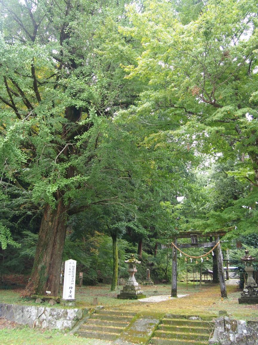 f:id:YumiAIKAWA:20201013075207j:plain