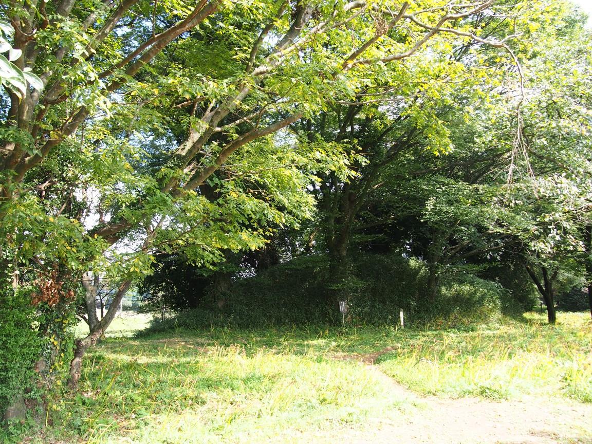 f:id:YumiAIKAWA:20201013153341j:plain