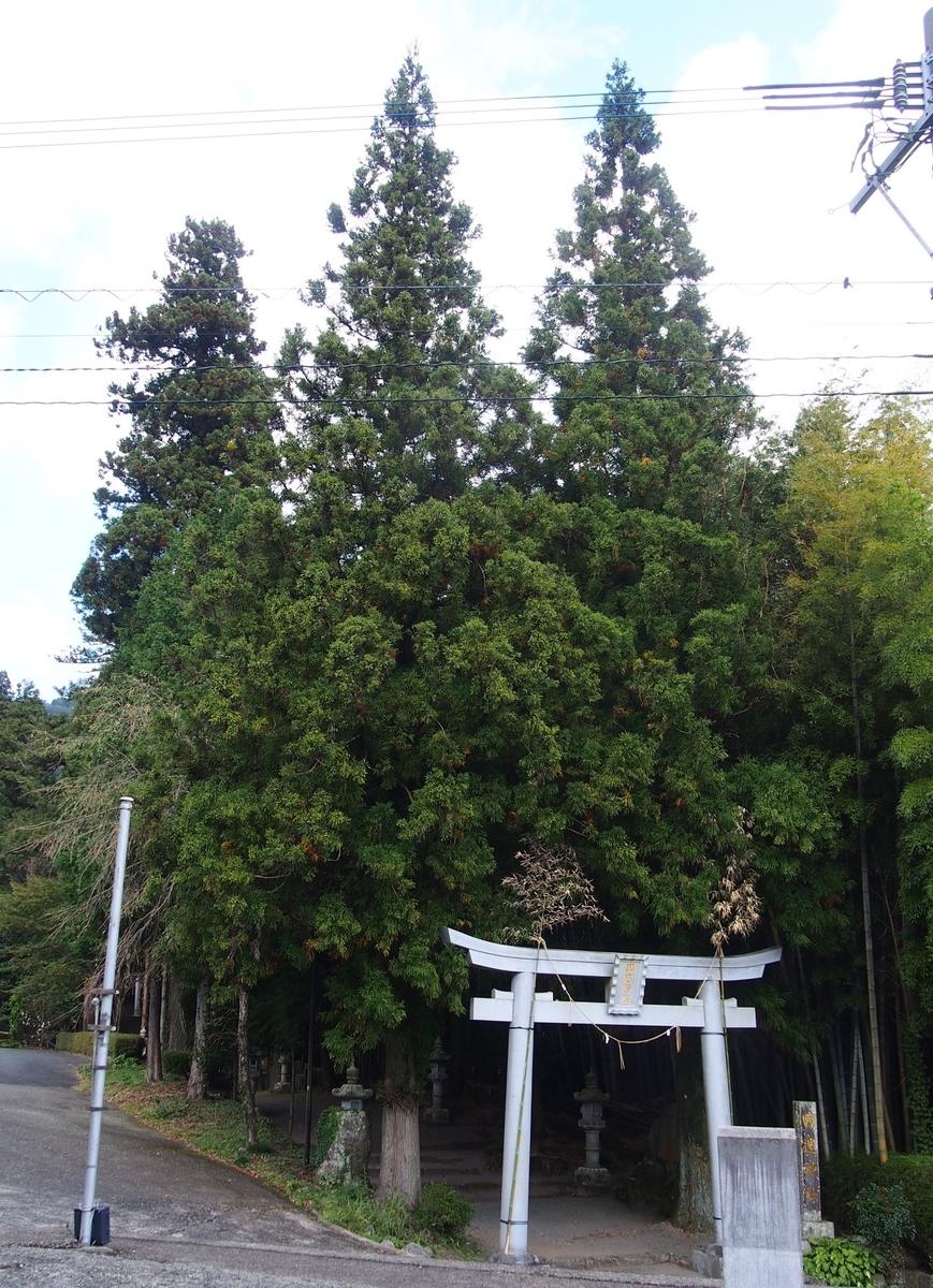 f:id:YumiAIKAWA:20201013173902j:plain