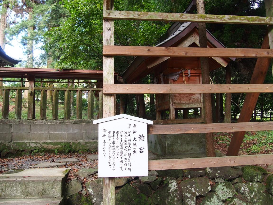 f:id:YumiAIKAWA:20201013174934j:plain