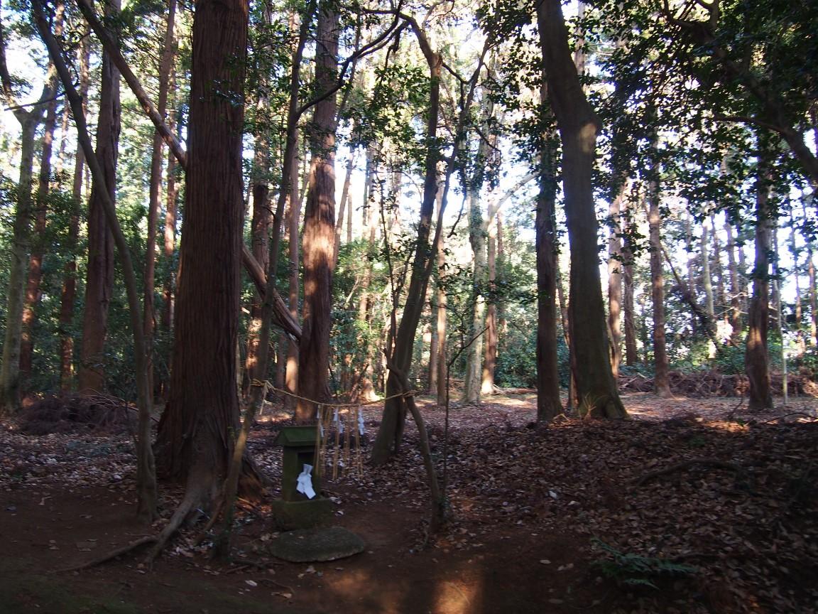 f:id:YumiAIKAWA:20210117034511j:plain