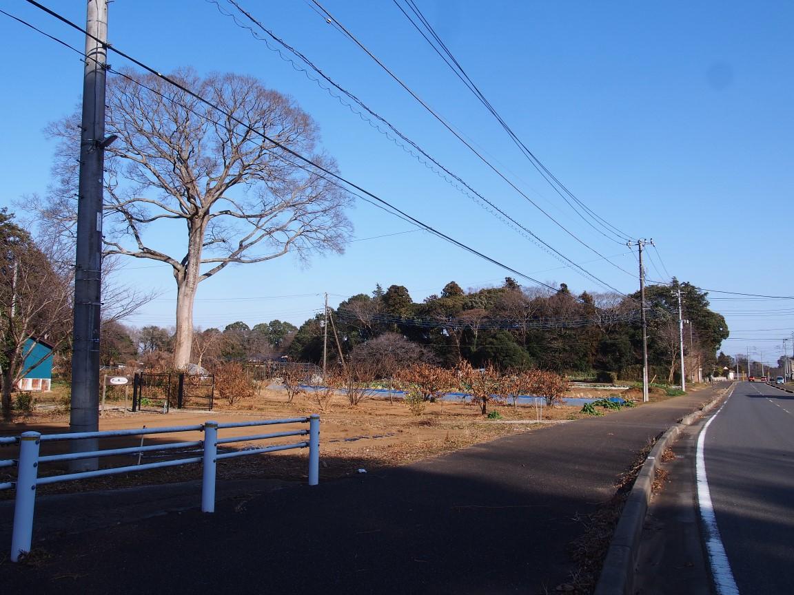 f:id:YumiAIKAWA:20210117040524j:plain