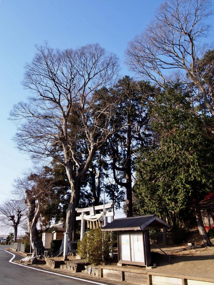 f:id:YumiAIKAWA:20210117112210j:plain