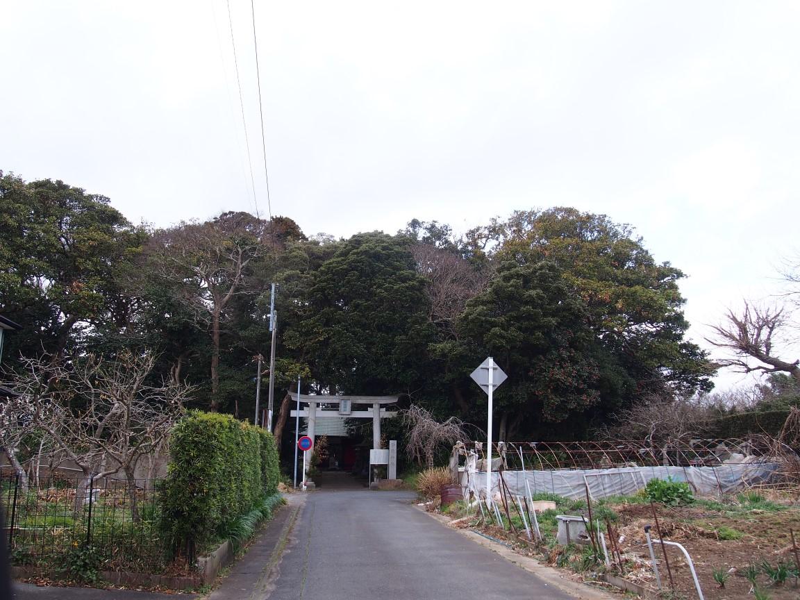 f:id:YumiAIKAWA:20210305063624j:plain
