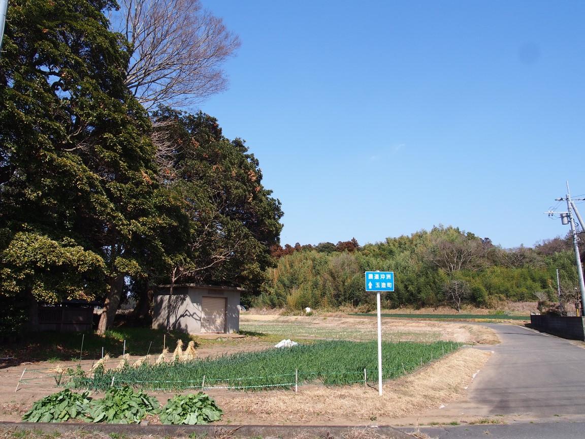 f:id:YumiAIKAWA:20210311001538j:plain