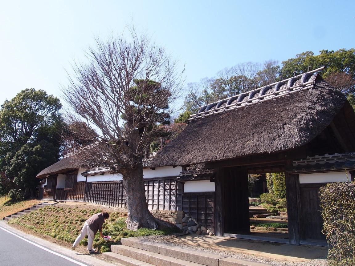f:id:YumiAIKAWA:20210311230544j:plain