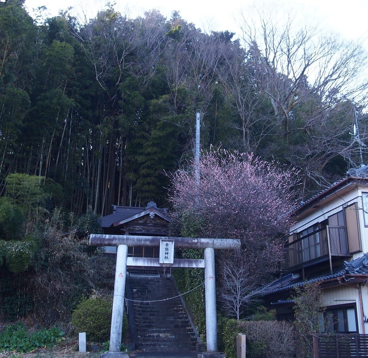 f:id:YumiAIKAWA:20210312065352j:plain