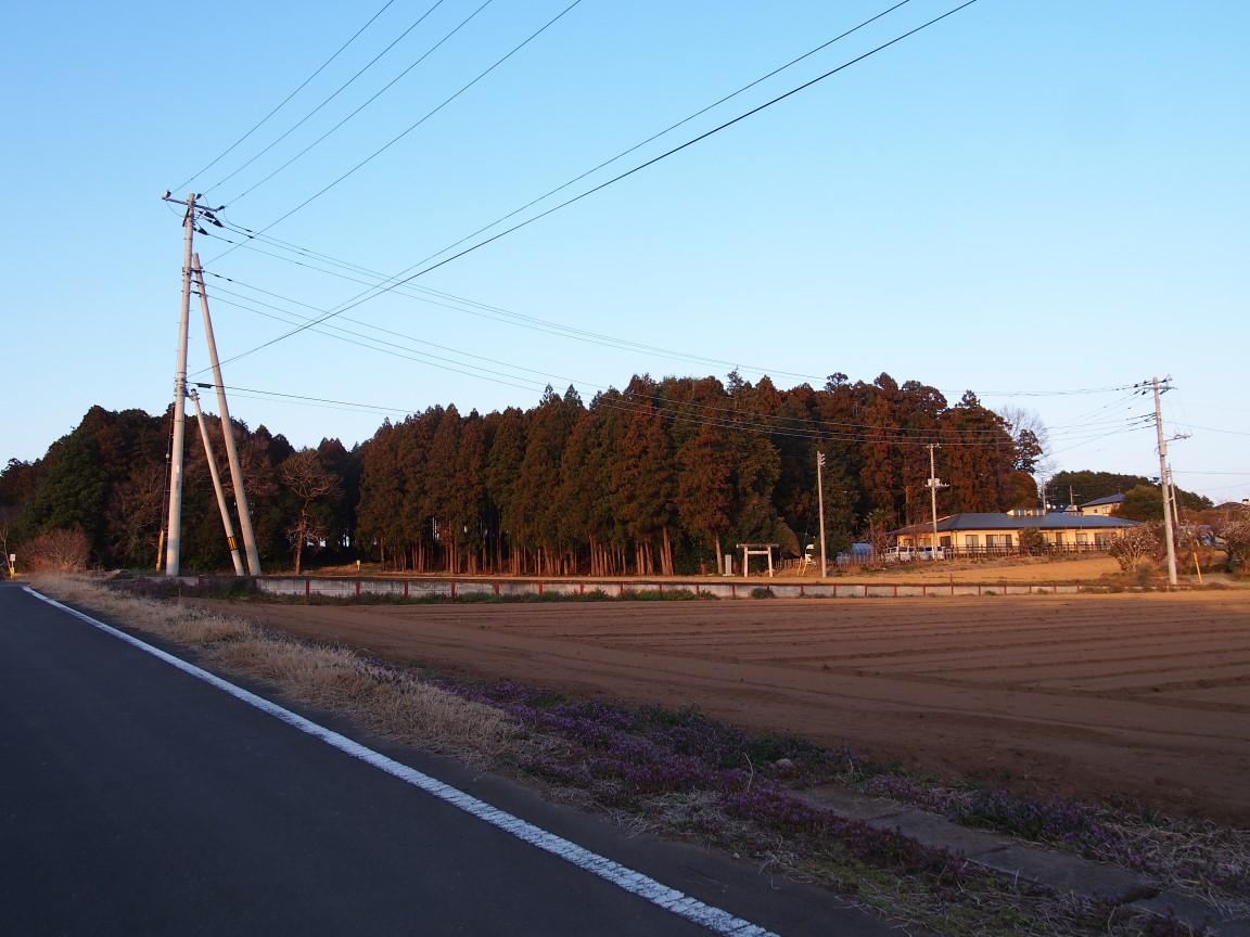 f:id:YumiAIKAWA:20210312093728j:plain