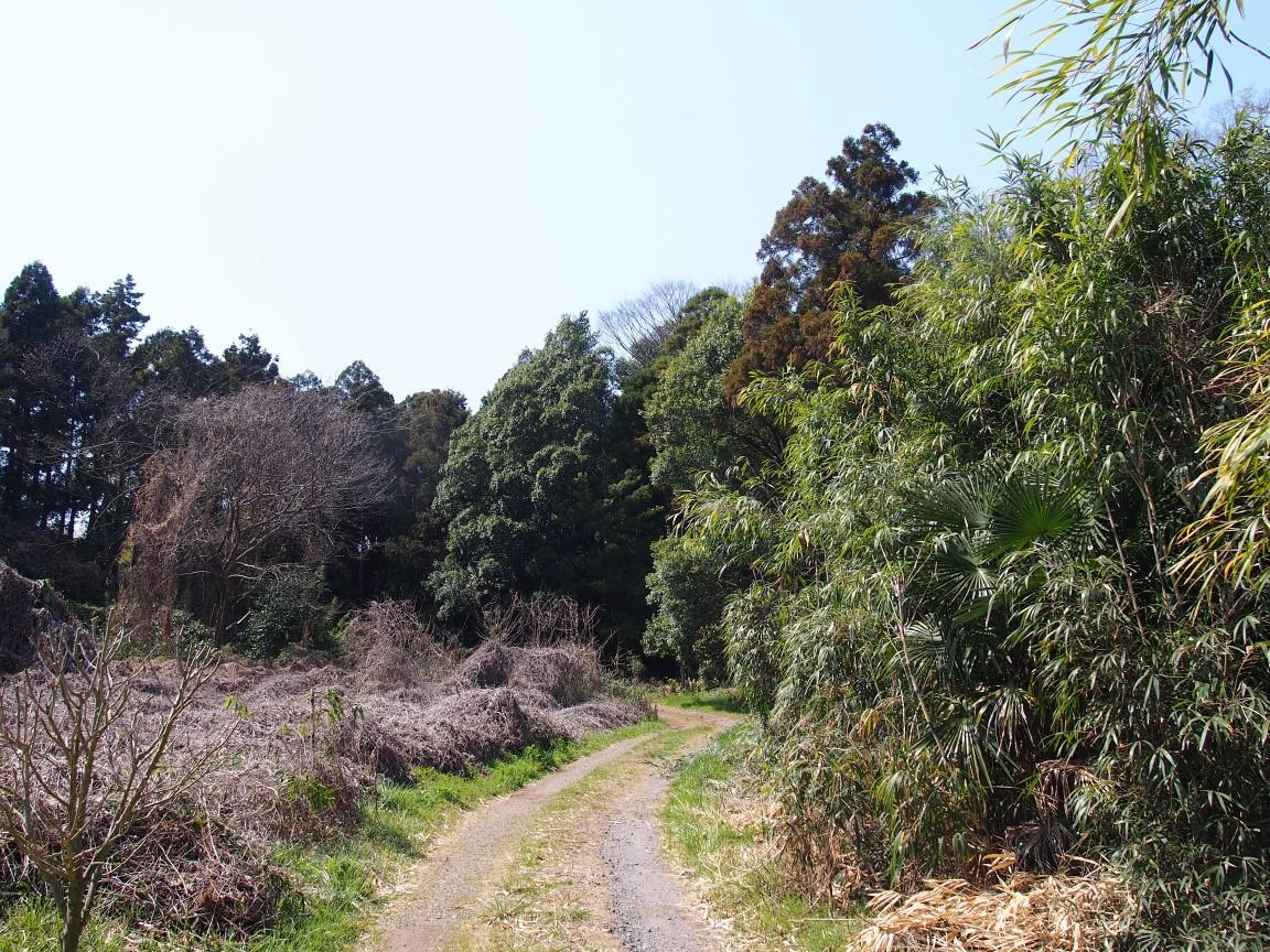 f:id:YumiAIKAWA:20210327044038j:plain