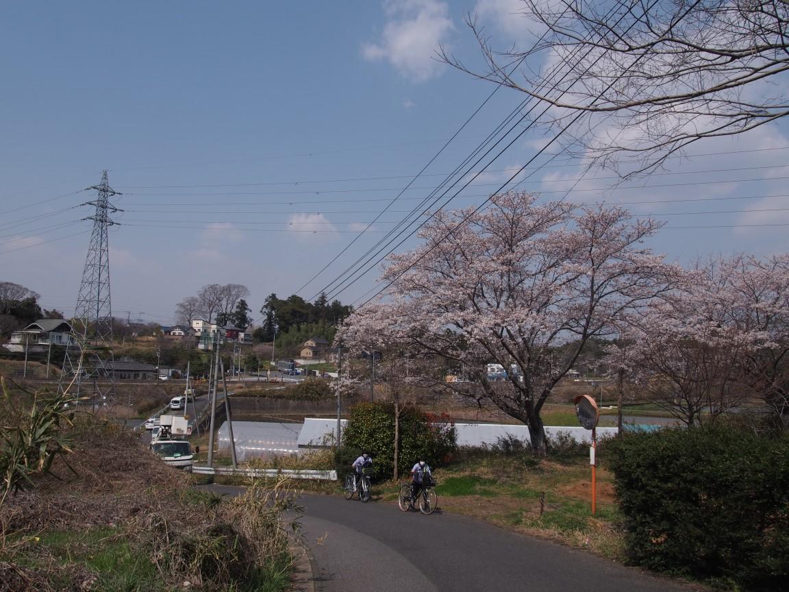 f:id:YumiAIKAWA:20210327074128j:plain