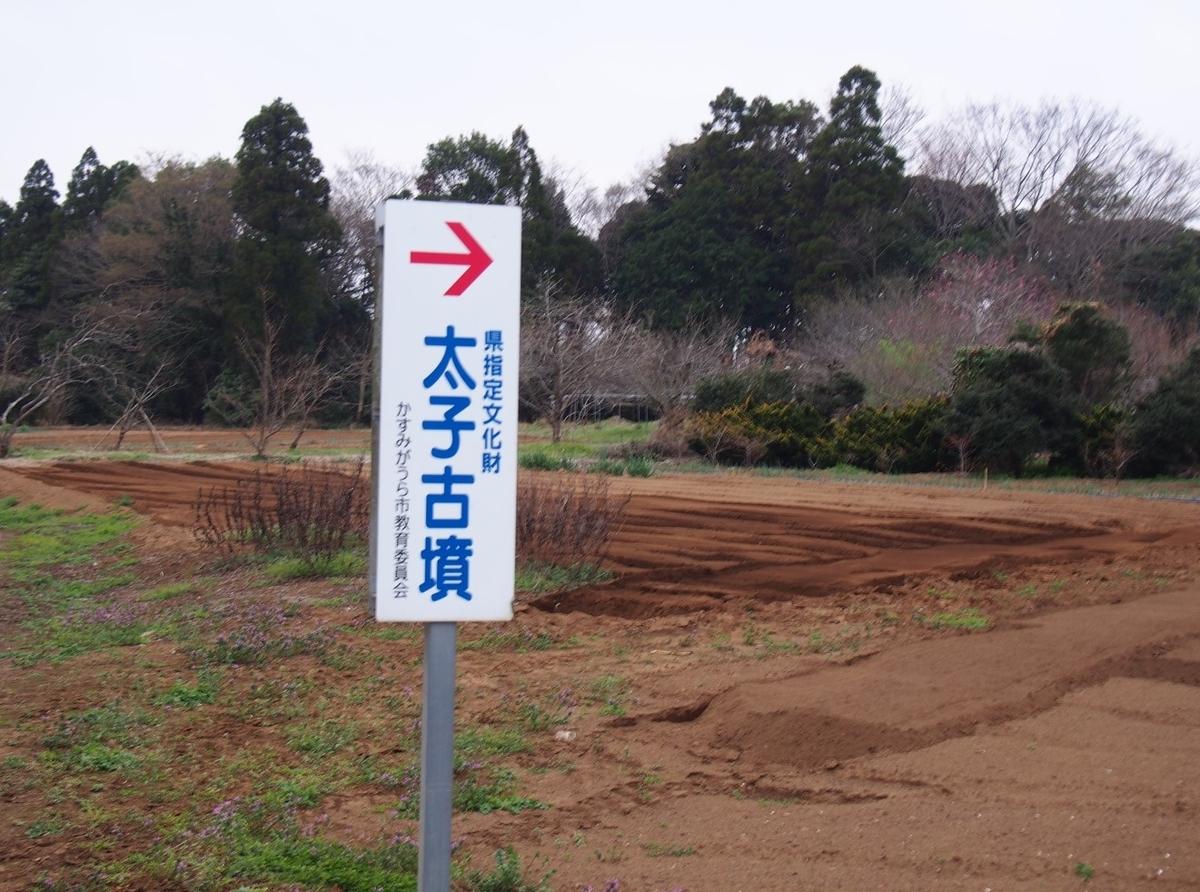 f:id:YumiAIKAWA:20210328101140j:plain