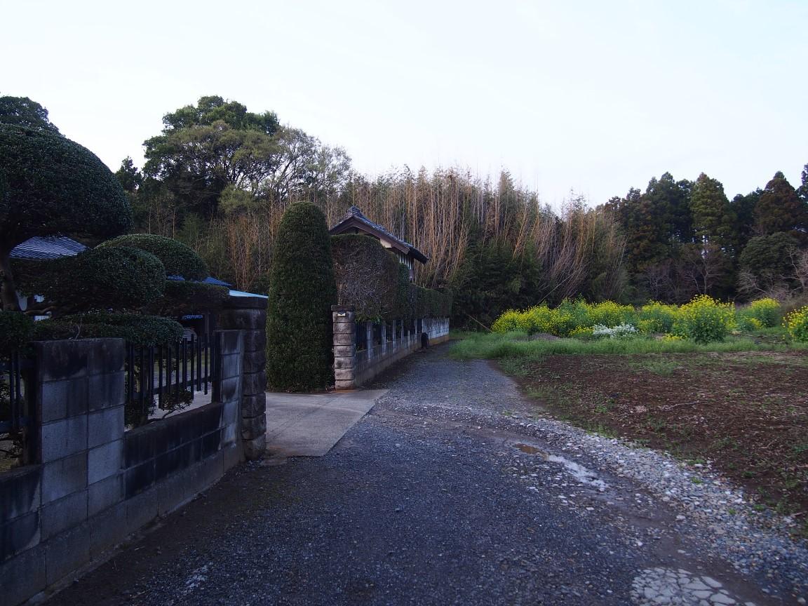 f:id:YumiAIKAWA:20210330090416j:plain