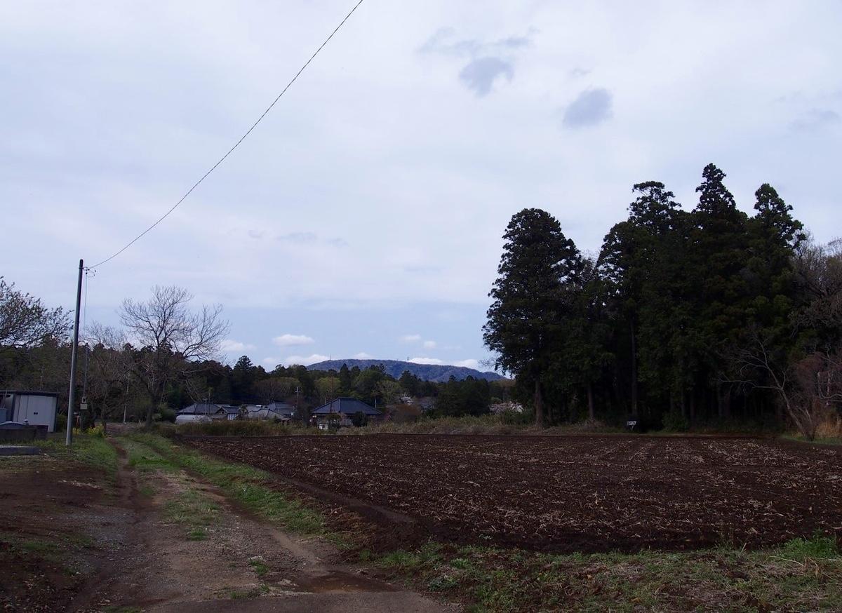 f:id:YumiAIKAWA:20210330105620j:plain