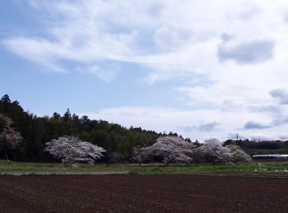 f:id:YumiAIKAWA:20210330105649j:plain