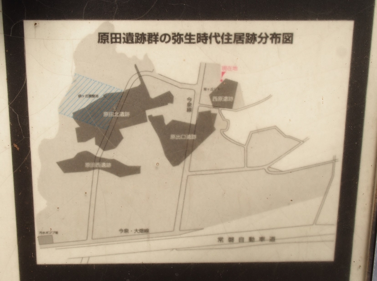 f:id:YumiAIKAWA:20210331035510j:plain