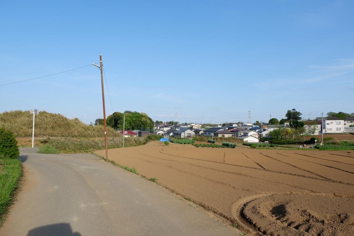 f:id:YumiAIKAWA:20210413114205j:plain