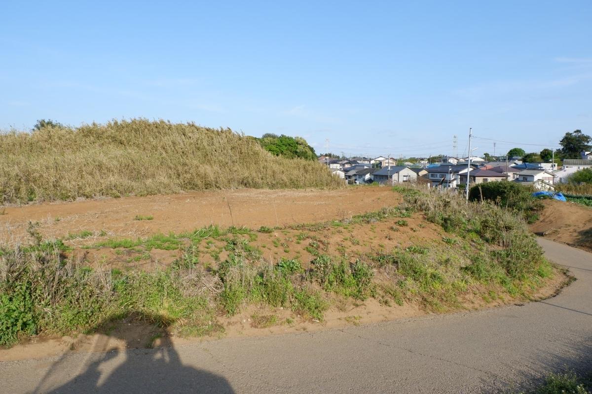 f:id:YumiAIKAWA:20210413114410j:plain