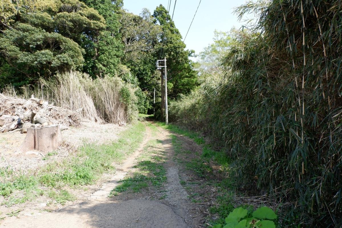 f:id:YumiAIKAWA:20210414132611j:plain