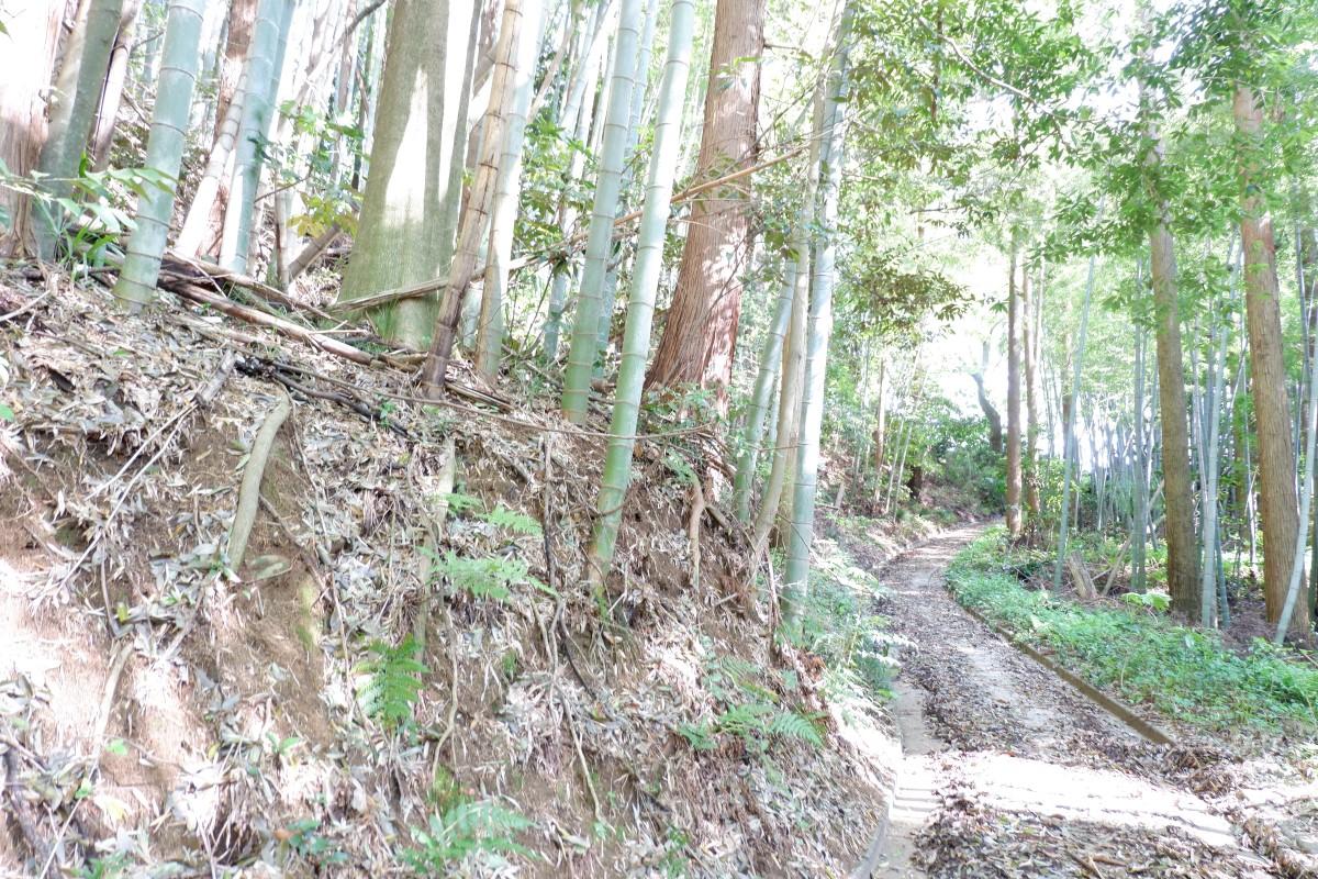 f:id:YumiAIKAWA:20210416051004j:plain