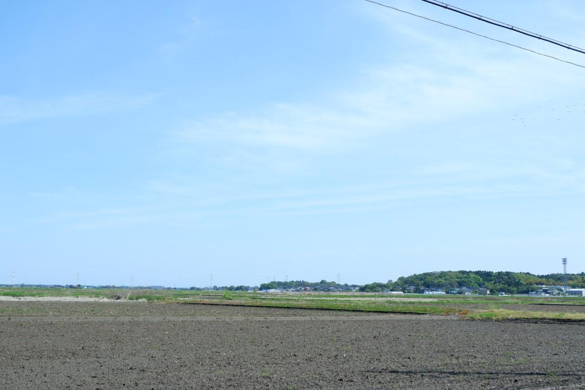 f:id:YumiAIKAWA:20210419192202j:plain