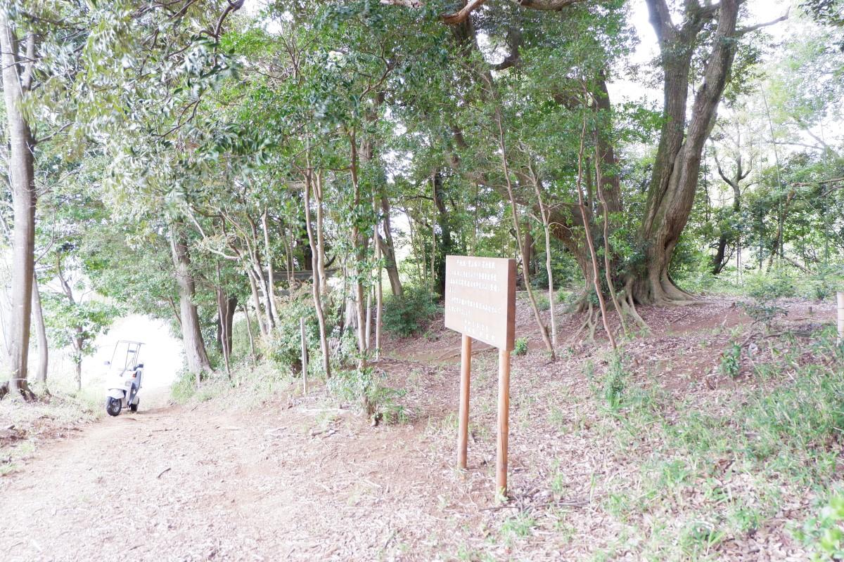 f:id:YumiAIKAWA:20210422082620j:plain